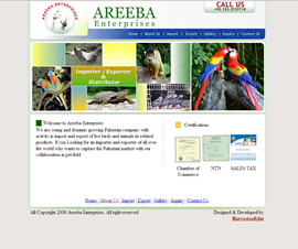 <a href='http://www.areeba-ent.com' target='_blank'>Launch Project >></a>